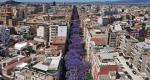 Architetture vegetali: a Cagliari una mostra per raccontare il valore dei viali alberati