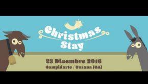 christmas-stayloc