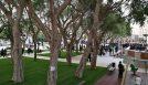 Nuova Piazza Garibaldi: le opinioni dei cittadini